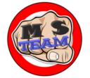 MS Team